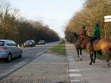 Ermelo krijgt bijzondere 'paardenrotonde'