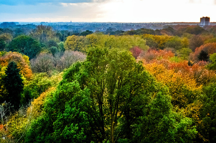 Leijpark in herfstkleuren, gezien van het Cenakel.