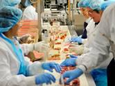 Doorstart onder zelfde bedrijf voor taartenbakker Maître Paul, maar ontslag voor 130 man