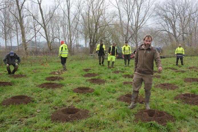 Boswachter Bram Vereecken leidde de bosaanplant vrijdag in goede banen.