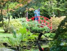 Japanse tuin met zeldzame bomen en planten weer even open voor publiek