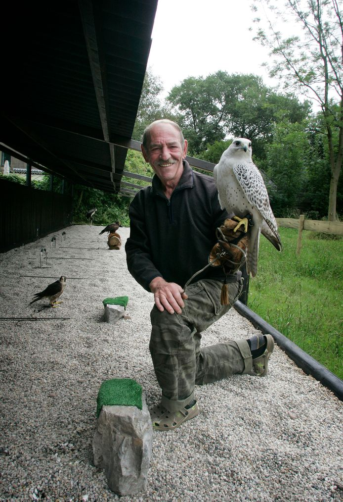 Frans Lenders van valkerijcentrum Falconcrest is overleden. Op deze archieffoto uit 2008 zit hij met een geervalk.