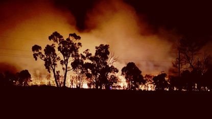 Meer dan 2.400 hectare bos in de as gelegd rond Sydney