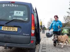 Met haar dierentaxi vol konijnen scheurt Karin door half Europa