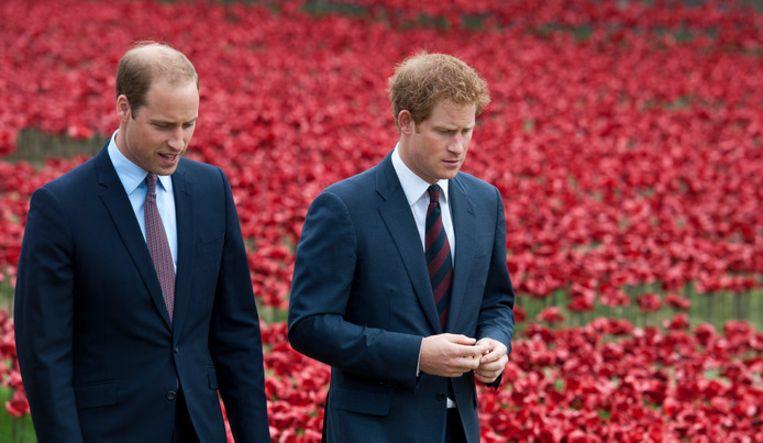 Prins William en broer Harry in 2014. Beeld EPA