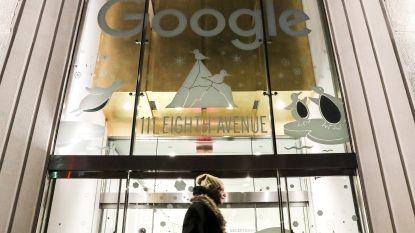 Google sluisde 20 miljard via Nederland naar belastingparadijs