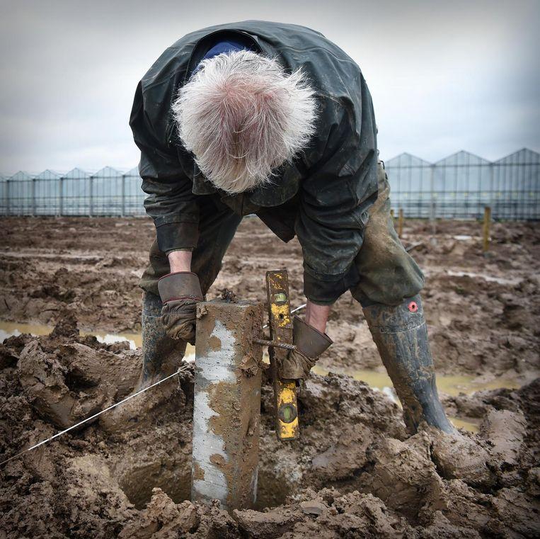 Een oudere werknemer in de kassenbouw bij Bemmel.   Beeld Marcel van den Bergh / de Volkskrant