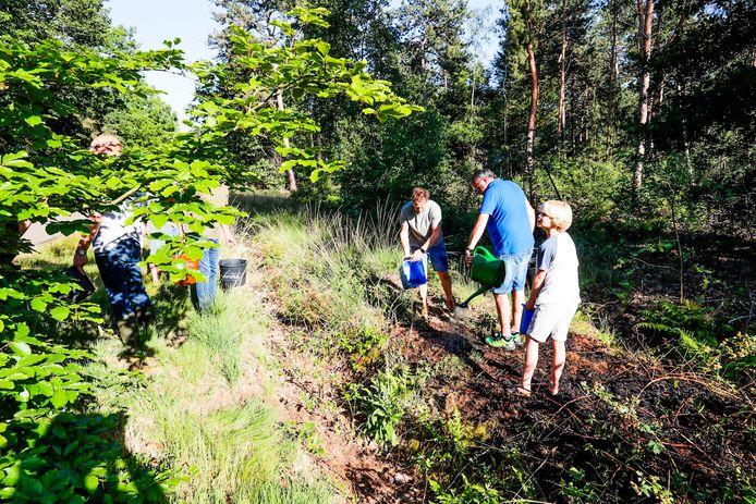 Omstanders helpen de brandweer met het blussen van de natuurbrandjes in Cranendonck.