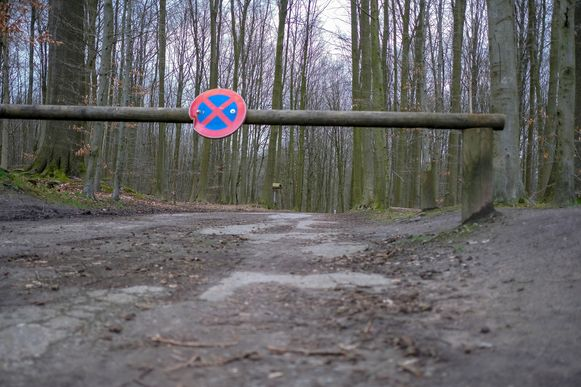 In deze weg naar de Koningsvijvers in het Zoniënwoud werd de 24-jarige vrouw maandagavond bedreigd met een vuurwapen.