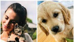 SHOWBITS. Staf Coppens en Lize Feryn verwelkomen schattige nieuwe gezinsleden