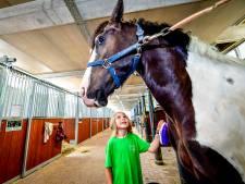 Deze kinderen 'vieren vakantie' op manege: 'Paarden oordelen niet'