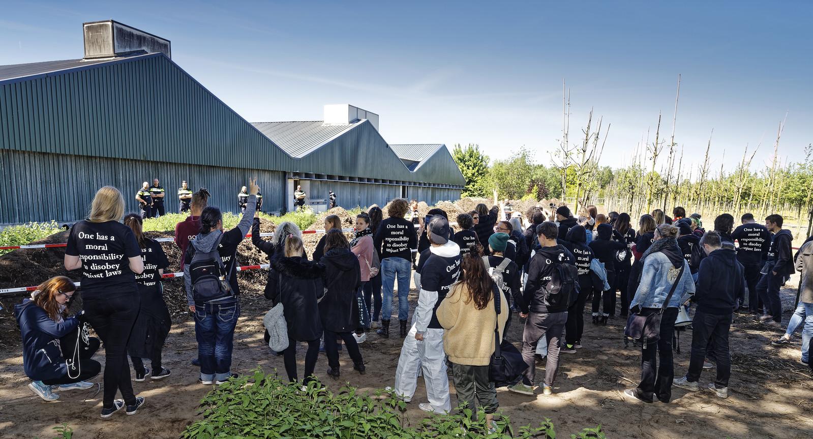 Op 13 mei werd een Boxtelse varkensstal bezet door Meat the Victims.
