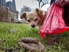 Weinig overlast in Rijssen-Holten: Hondendrol gaat netjes in het zakje