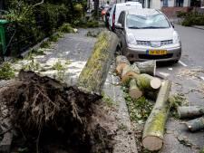 Schade door zomerstorm Francis, nog zware windstoten in kustgebieden