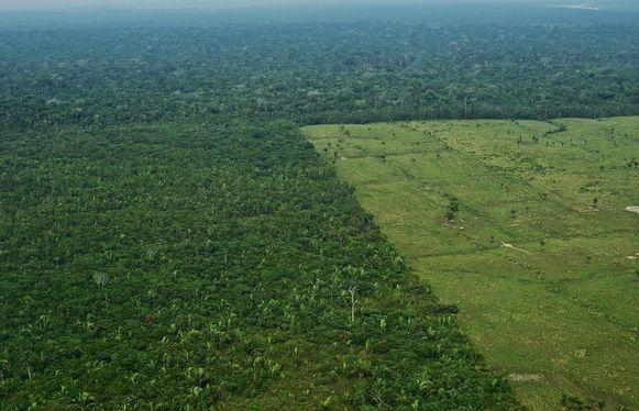 Ontbossing van de Amazone.