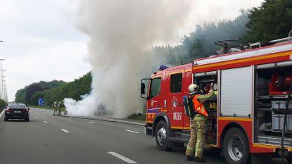 Bestelwagen brandt uit op E40