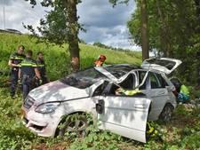 Man rijdt met auto van talud op A65 en belandt tegen een boom