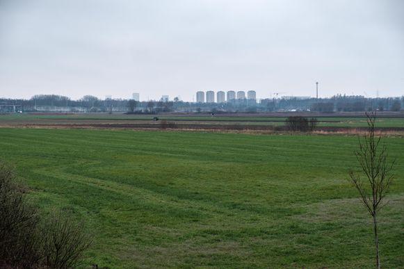Dit weilandschap wordt in de toekomst een waterpark/natuurpark.
