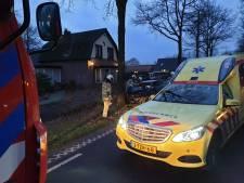 Auto knalt frontaal tegen boom in Stoutenburg