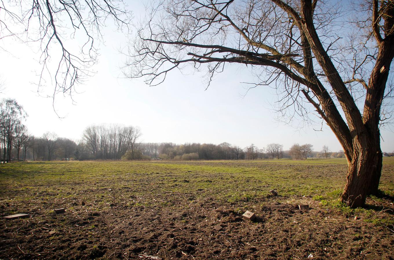 De plek waar 'weilandwijk' Dommelkwartier gebouwd zou worden.