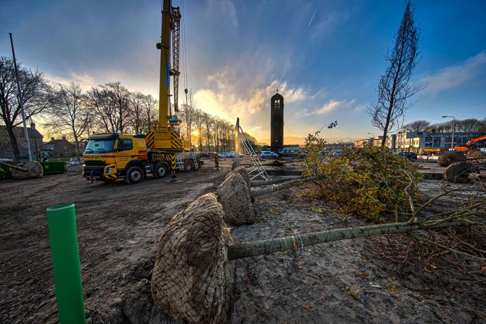 De gemeente Noordoostpolder plant de komende twee weken Tulpenbomen op De Deel in Emmeloord, met de Poldertoren op de achtergrond.
