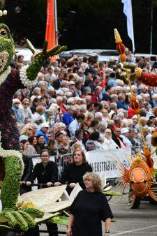 Culemborg en jeugd Geldermalsen grote winnaars Fruitcorso 2018