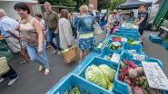 Wekelijkse boerenmarkt blijft aan belastinggebouw