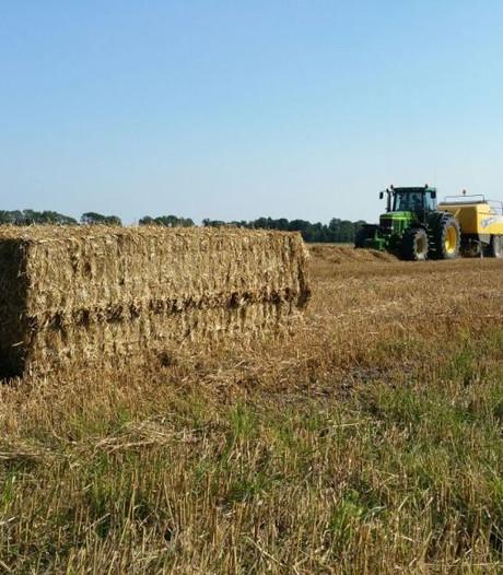 Boeren vechten verkoop landbouwgrond Zeeuws-Vlaanderen aan