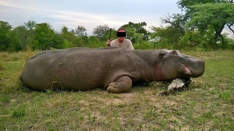"""""""De foto's waarmee organisatoren van jachtsafari's reclame maken"""", schrijft Animal Rights."""