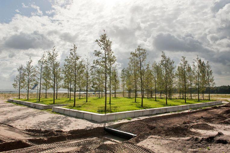 Er is al een moseikencarré op Centrumeiland (IJburg), terwijl de woningbouw daar nog moet beginnen Beeld Ko Hage