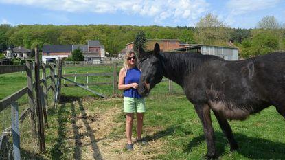 Jongeren viseren blind paard: met paintballgeweer en bommetjes bestookt
