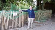 Roger verzorgde dieren van VBS Borsbeke tijdens vakantie