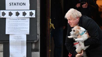 Dit staat er voor de Britten op het spel met cruciale brexitverkiezingen