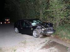 Automobilist knalt op boom in Aagtekerke