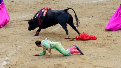 Mallorca vat koe bij horens en verbiedt dodelijke corrida's