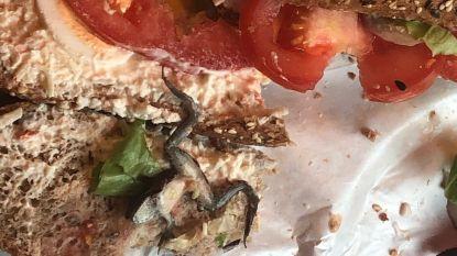 """Vrouw vindt dode kikker in broodje van Brusselse Panos: """"Jullie hebben wat uit te leggen"""""""