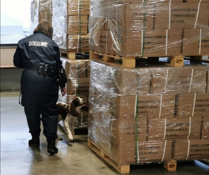 Drugshond Louis zoekt in een lading uit China naar verdovende middelen.