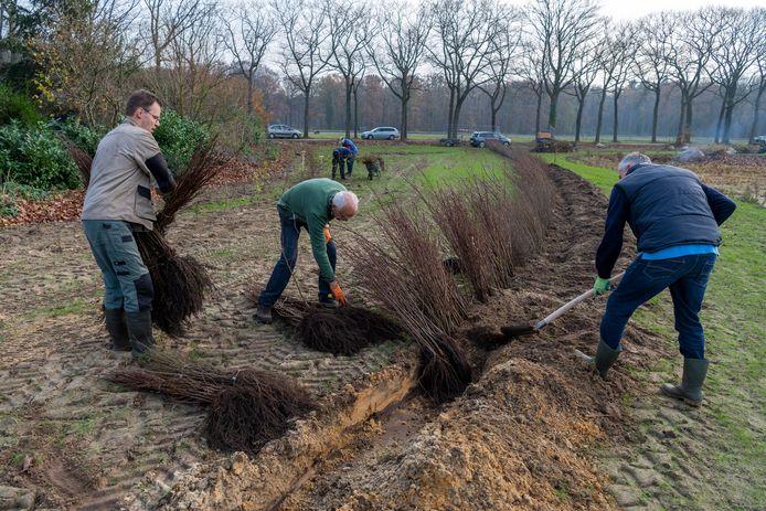 Vrijwilligers van Duurzaamheidsvallei en Intents zetten samen een retentiebekken in het groen.