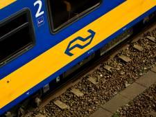 Verdachte heeft geen geld voor trein, zaak aangehouden