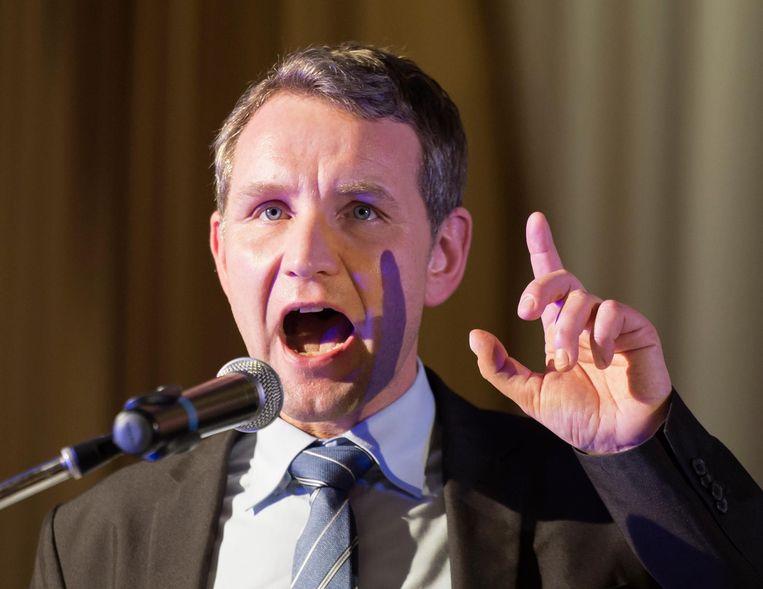 Höcke kreeg bijval van partijgenoot Alexander Gauland. Beeld ap