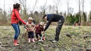 Natuurpunt 's Heerenbosch zet in op natuur dicht bij huis: twee nieuwe bossen in de maak