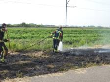 Omstanders en brandweer blussen bermbrand in Waddinxveen