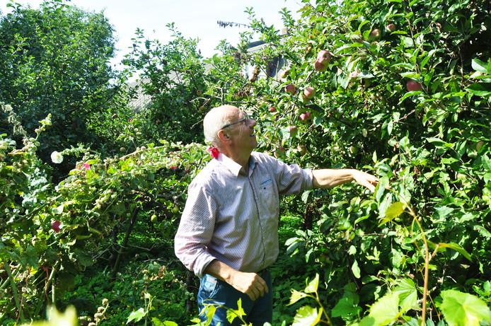 In het Voedselbos kunnen mensen straks zelf hun fruit en kruiden plukken voor eigen gebruik.