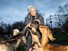 Kinderboerderijen barsten van de plannen, maar 'staan in de overleefstand'