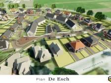 Omwonenden Tubbergse Esch: 'Niet bouwen en zeker geen dure huizen'