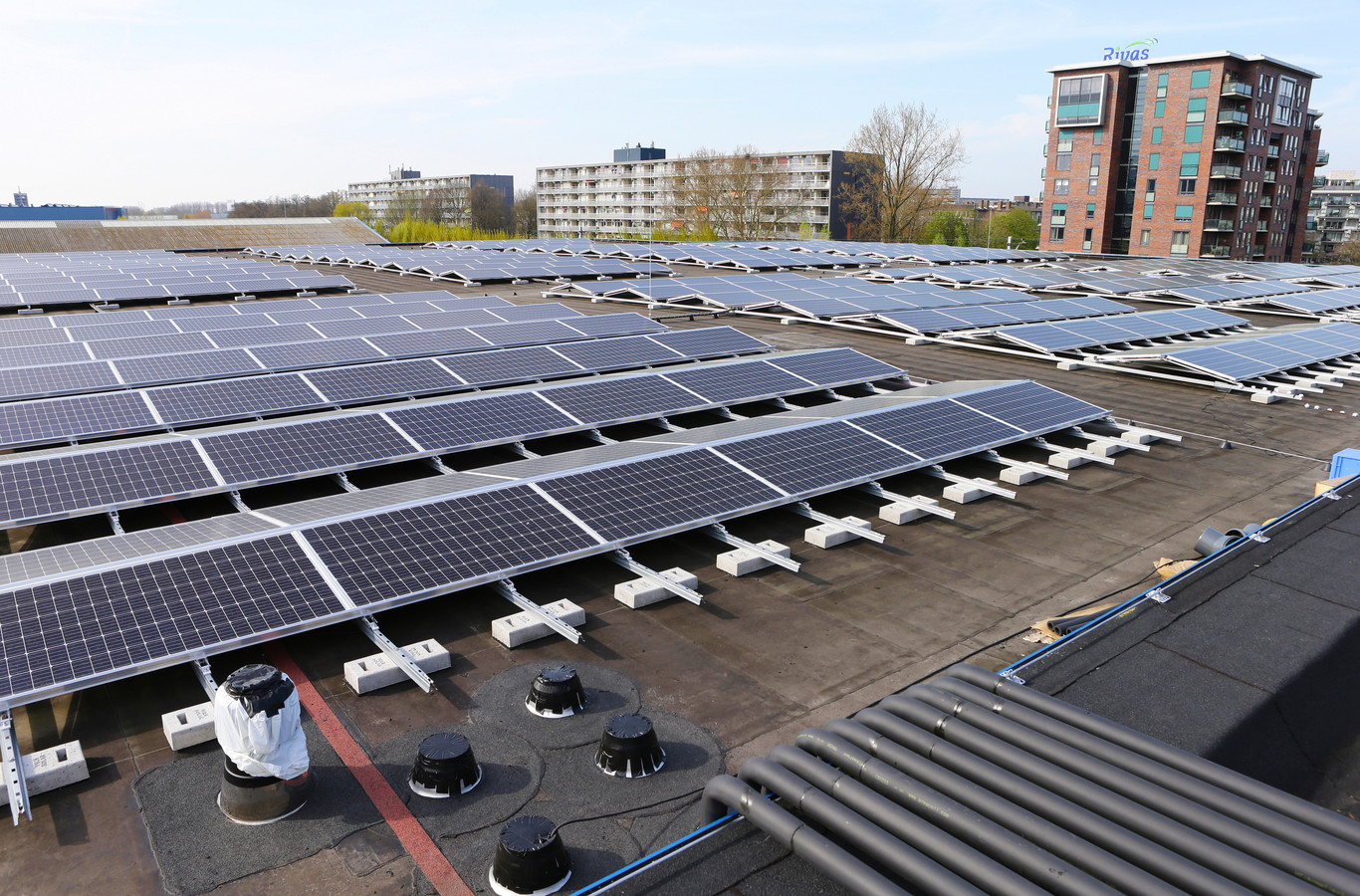 Als het aan D66 in Meierijstad ligt, komen zo veel mogelijk bedrijfsdaken vol te liggen met zonnepanelen of zonnefolie.