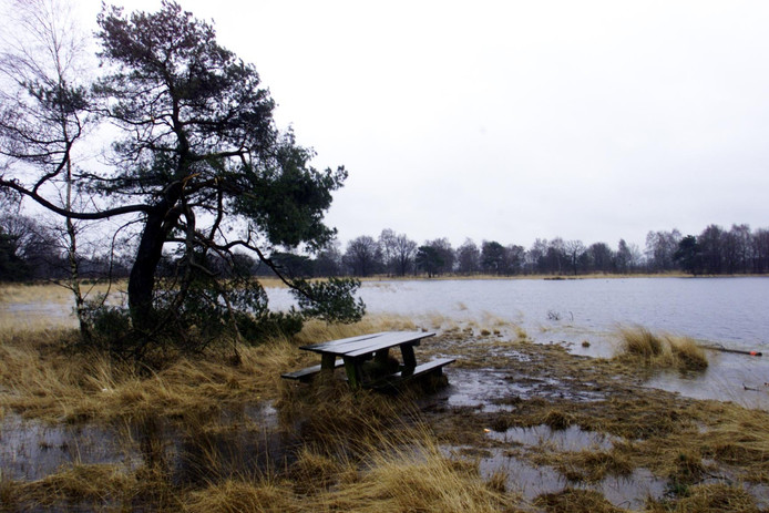 Brabants Landschap wil het oude landschap bij het Zwartven herstellen.