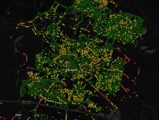 37.700 bomen in Hengelo, welke is de oudste?