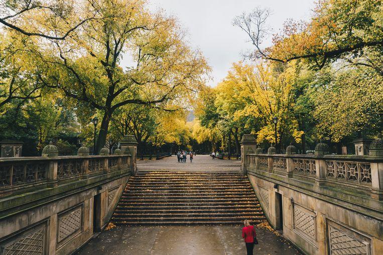 Foto ter illustratie van Central Park.
