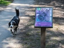 Loslopende honden krijgen extra aandacht van toezichthouders